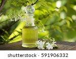 moke  thai name  flowers ... | Shutterstock . vector #591906332