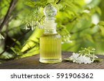 moke  thai name  flowers ... | Shutterstock . vector #591906362