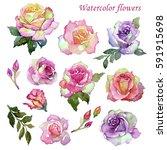 watercolor painting  vintage...   Shutterstock . vector #591915698
