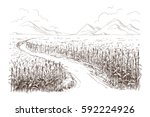 hand drawn vector illustration... | Shutterstock .eps vector #592224926