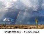 Arizona Desert Rain Storm