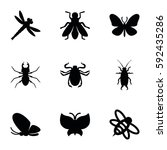 insect icons set. set of 9...