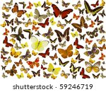 butterflies background | Shutterstock . vector #59246719