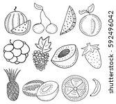 hand drawn fruits | Shutterstock .eps vector #592496042