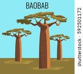 african baobab tree... | Shutterstock .eps vector #592501172