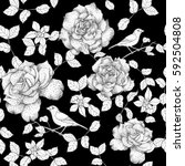 monochrome roses with leaves... | Shutterstock .eps vector #592504808