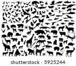 many vectors of animals | Shutterstock .eps vector #5925244