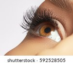 beautiful macro shot of female...   Shutterstock . vector #592528505