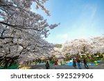 Tokyo  Japan   April 2  2014 ...