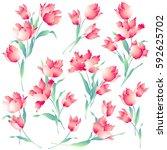 japanese style tulip   Shutterstock .eps vector #592625702