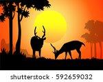 deer   sunset forest   vector