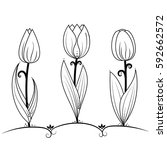 Tulips, flowers, black and white coloring pages, vector illustration doodle