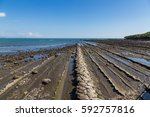 devil's washboard coastline in... | Shutterstock . vector #592757816