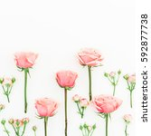 Stock photo floral pattern of pink roses isolated on white background flat lay top view floral background 592877738