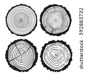 tree rings. set of cross... | Shutterstock .eps vector #592883732