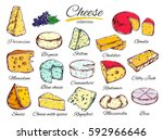 cheese collection in color.... | Shutterstock .eps vector #592966646