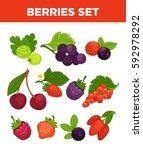 berries set of gooseberry ... | Shutterstock .eps vector #592978292