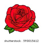 flower rose  red buds and green ... | Shutterstock .eps vector #593015612