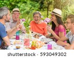 multi generation family... | Shutterstock . vector #593049302