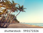 landscape of coconut palm tree... | Shutterstock . vector #593172326