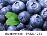 Blueberry Background. Ripe And...