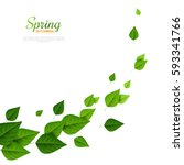 flying green leaves on white... | Shutterstock .eps vector #593341766