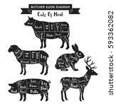 butcher guide cuts of meat... | Shutterstock .eps vector #593362082