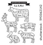 butcher guide cuts of meat... | Shutterstock .eps vector #593362142