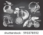 ink hand drawn set of different ... | Shutterstock .eps vector #593378552