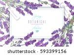 vector lavender flowers banner...