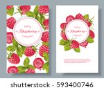 vector raspberry vertical... | Shutterstock .eps vector #593400746