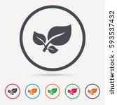 leaf icon. fresh organic... | Shutterstock .eps vector #593537432
