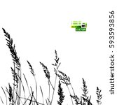 grass tracing. vector | Shutterstock .eps vector #593593856