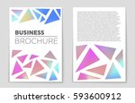 abstract vector layout... | Shutterstock .eps vector #593600912