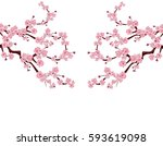 branches with pink flowers and... | Shutterstock .eps vector #593619098