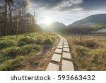 sunset in the woods corridor | Shutterstock . vector #593663432