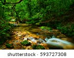 kahlpahlim rock trail  dinden... | Shutterstock . vector #593727308