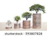 concept of money tree growing... | Shutterstock . vector #593807828