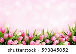 pink tulip flowers border on... | Shutterstock . vector #593845052