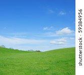 Vivid Green Grass And Blue Sky