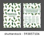 leaf illustration background...   Shutterstock .eps vector #593857106