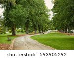 park with tall green trees | Shutterstock . vector #593905292