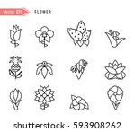 set of flat icon flower icons... | Shutterstock .eps vector #593908262