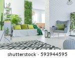 modern apartment with 3d... | Shutterstock . vector #593944595