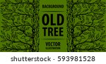 background old tree. green tree ...   Shutterstock .eps vector #593981528