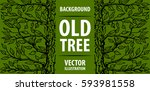 background old tree. green tree ...   Shutterstock .eps vector #593981558