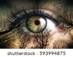surreal image with the theme of ... | Shutterstock . vector #593994875