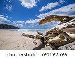 New Zealand   Lonely Beach  ...