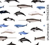 pattern with sea animals.... | Shutterstock . vector #594362306