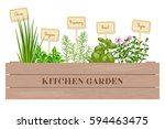wooden crate of farm fresh... | Shutterstock .eps vector #594463475